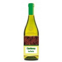 473- Chardonnay SanPuebla